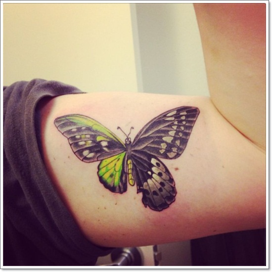butterfly tattoo 4