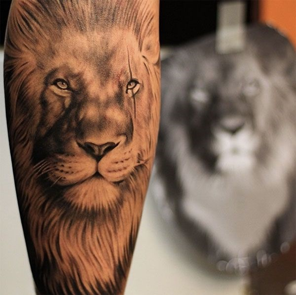 lion tattoo ideas (55)